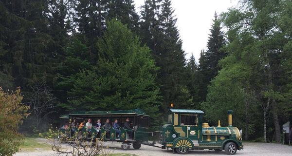 Eine Fahrt mit der Kleinen Arberseebahn ist ein tolles Erlebnis!