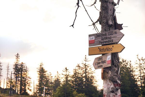 Das Naturkino Zwercheck bietet atemberaubende Ausblicke über den Lamer Winkel und bis zu den Alpen.