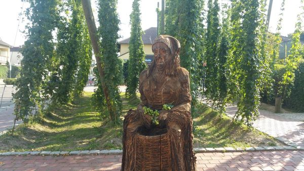 """Hopfenzuperin """"Agnes"""" am Hopfengarten"""