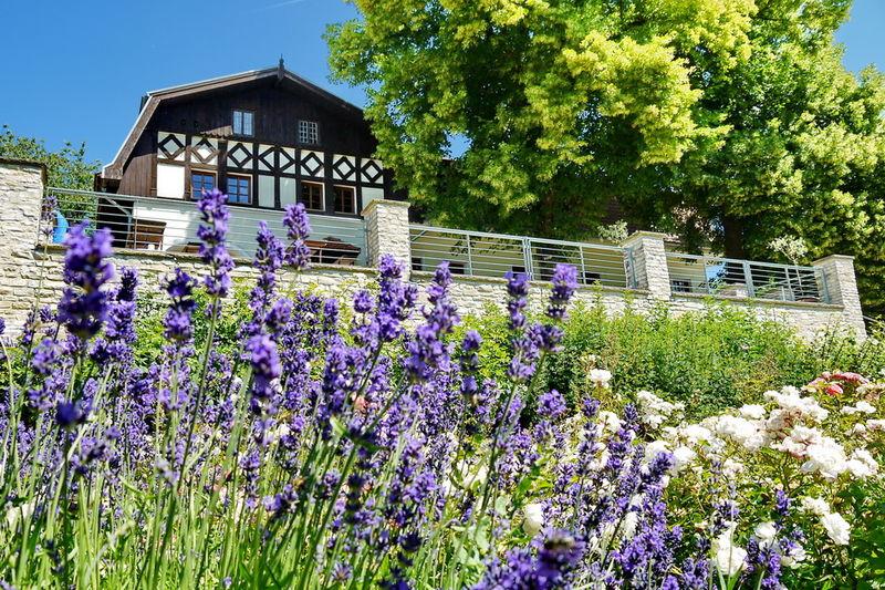 Blick auf Haus Lochfeld vom Garten aus