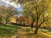 Obstbaumhain im Garten von Haus Lochfeld im Herbst