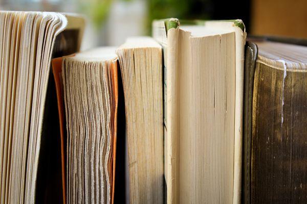 Bücher Bender