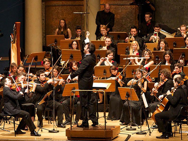 Mannheimer Philharmoniker, Orchester