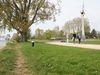 Mannheim Rheinpromenade, Spaziergänger am Ufer