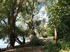 Waldpark und Reißinsel, malerische Uferzone