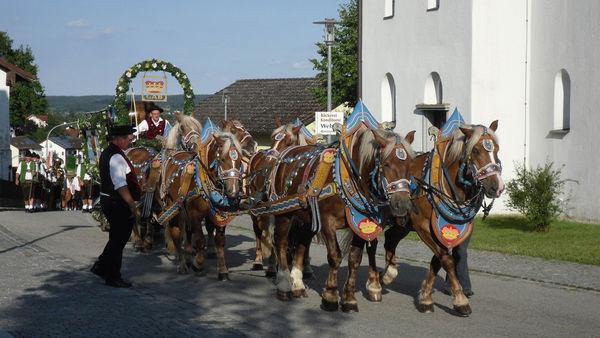 Festlicher Auszug mit einem original 6er Pferdegespann der Brauerei Graf Arco aus Adldorf zum Seefest Steinberg