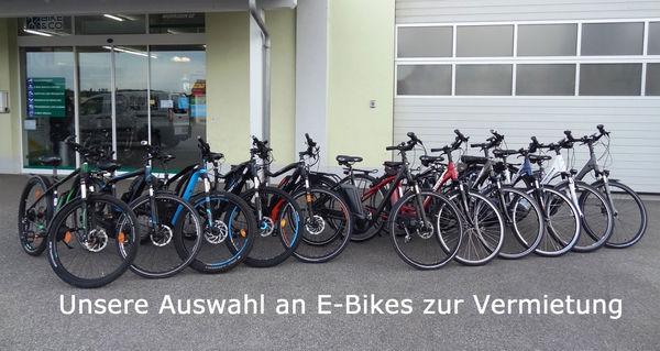 Unsere Auswahl an E-Bikes zur Vermietung