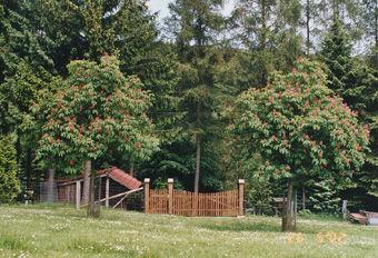 Arboretum Essenthoer Mühle