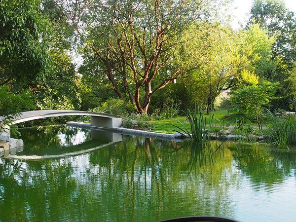 Blick auf den Schwimmteich im Goldshauser Garten in Marzling