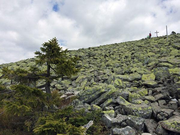 Das beeindruckende Blockmeer am Lusen im Bayerischen Wald