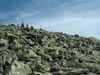 Eine geologische Sehenswürdigkeit ist das Blockmeer am Lusengipfel