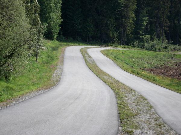Ideales Trainingsgelände ist die Skater- und Skirollerstrecke in Finsterau
