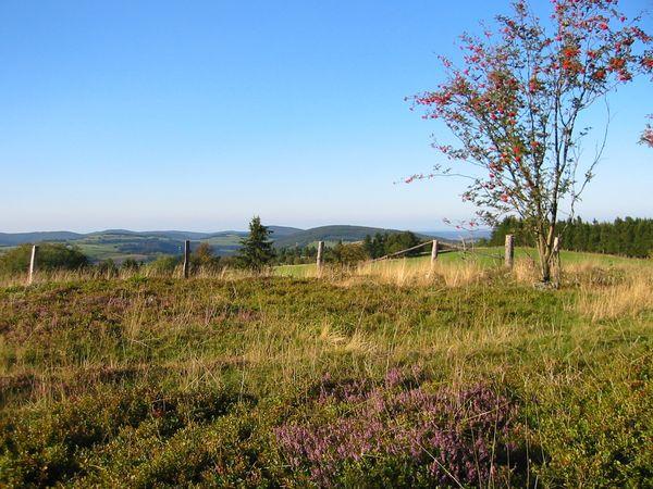 Pöngipfel Nordblick