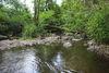 Die Orke erleben bei einer Wanderung auf dem Gewässerpfad Orke
