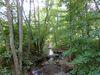 Gewässerpfad Orke bei Medelon