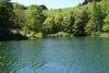 Der Uferweg führt entlang des Wassers und durch wunderschöne Natur