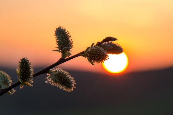 ... Sonnenuntergangsstimmung im Märkischen Sauerland...