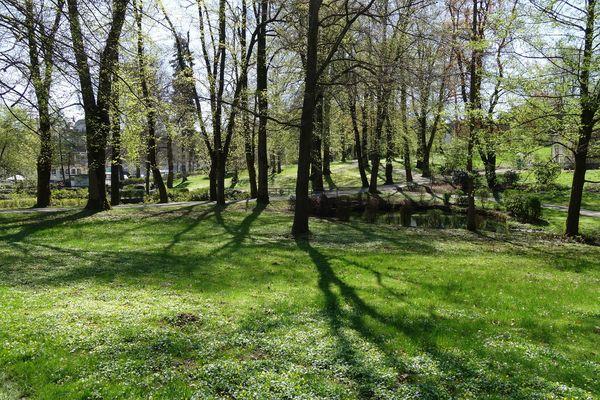 Blick über die Grünflächen