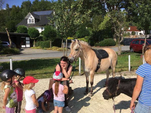 kleine Reitschülerinnen und -schüler mit Pferd