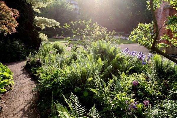 Jardin Botanique Jardins Sans Limites