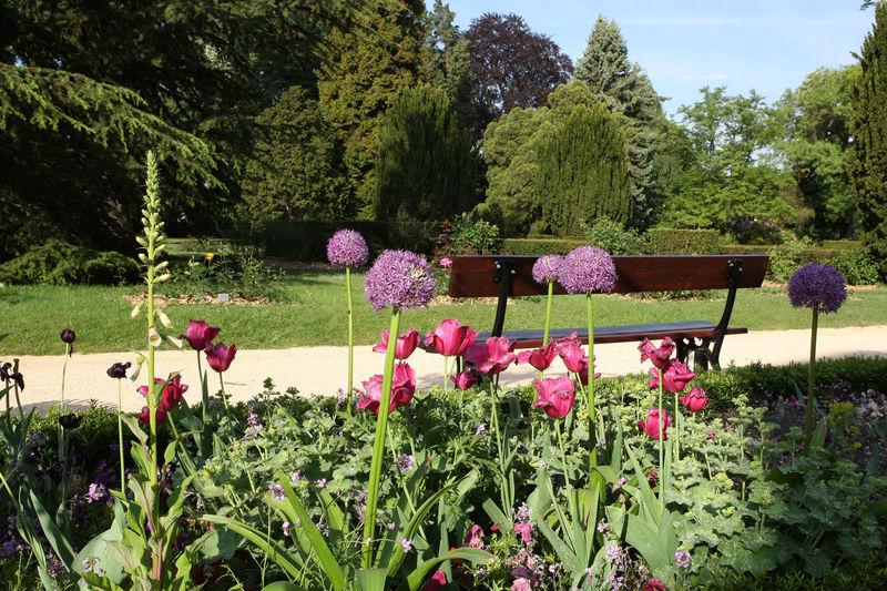 Jardin botanique tourismus zentrale saarland gmbh for Bal des citrouilles jardin botanique