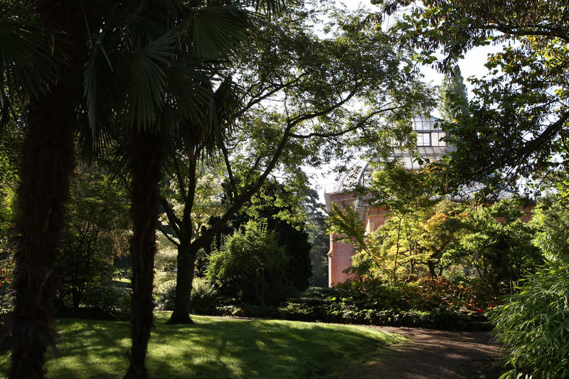 Jardin botanique jardins sans limites for Jardin fabert metz