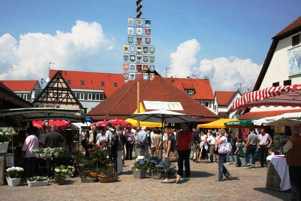 Regionalmarkt in Metzingen