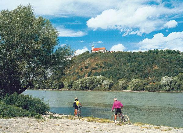Radler mit Blick auf den Bogenberg am Donau-Regen-Radweg