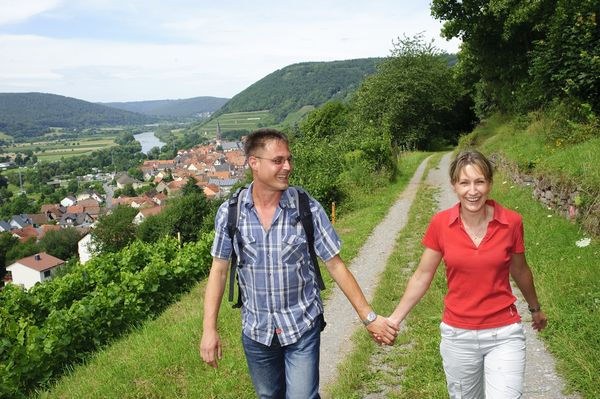 At the Franconian Red Wine Hiking Trail