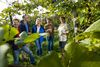 Guided tour of vineyards