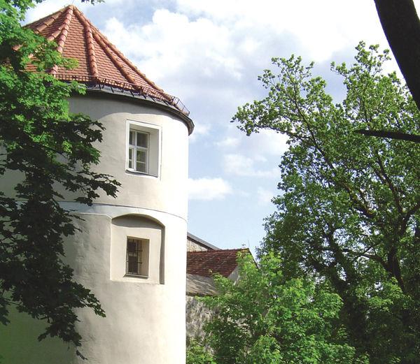 Blick auf den Burgturm der Mitterfelser Burg