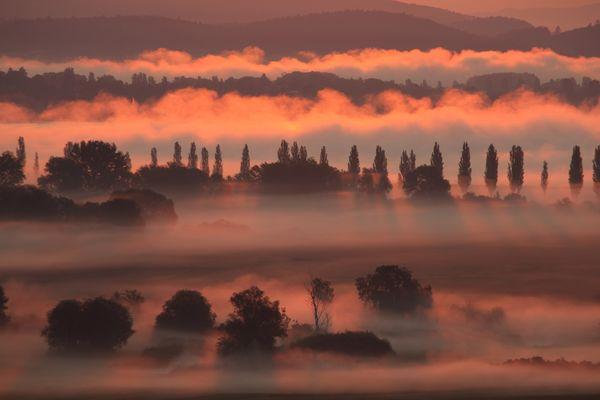Aachried bei Sonnenaufgang