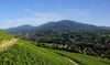 Blick vom Weilertal zum Hochblauen