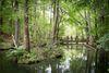 Naturpark Schlaubetal, Foto: Florian Läufer