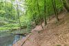 Schlaubetal-Wanderweg, Foto: TMB-Fotoarchiv/Steffen Lehmann, Lizenz: Tourismus-Marketing Brandenburg GmbH