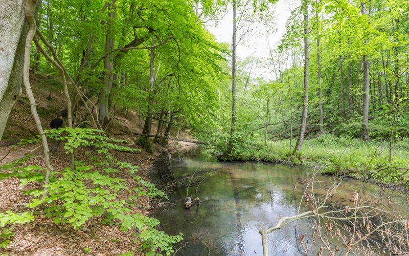 Schlaubetal-Wanderweg