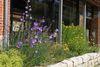Biosphärenzentrum Münsingen