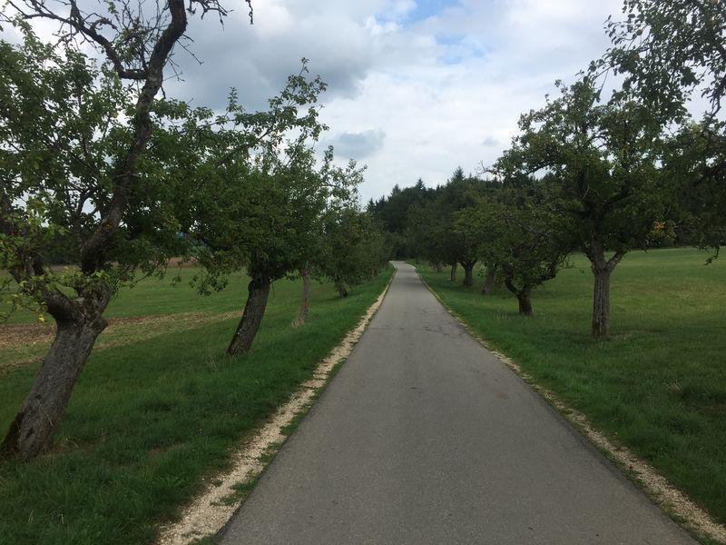 Münsingen e-Bike Tour 4 - Burgen im Großen Lautertal - Wimsen - Marbach