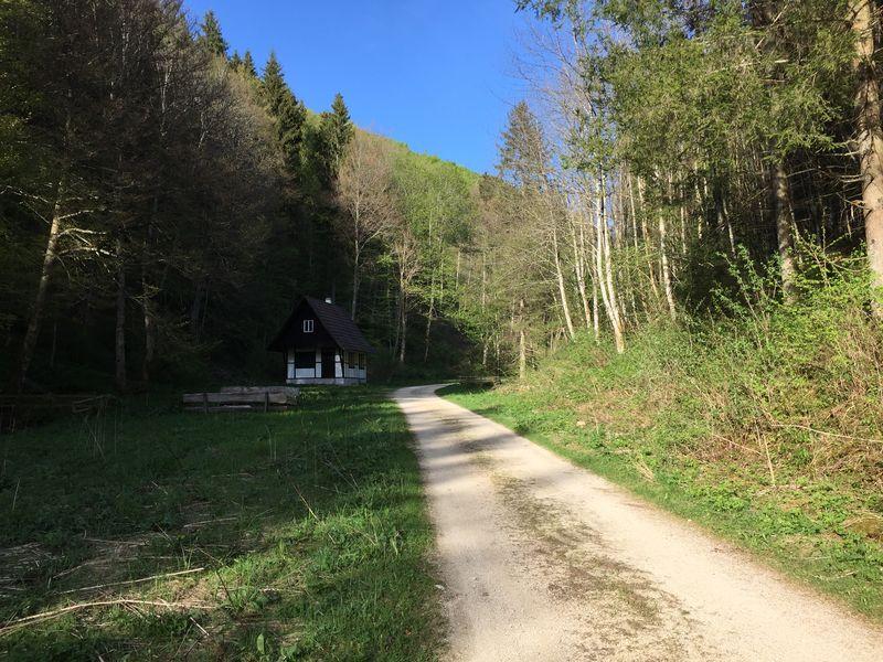 Weg 7 - Magolsheimer Buchtalweg (familien.freundlich)