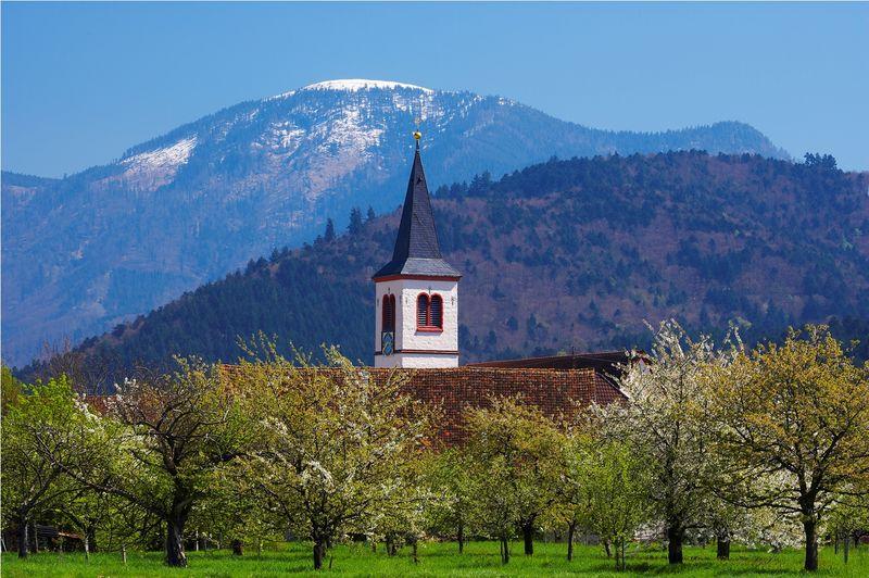 Käserei Schwarzwald