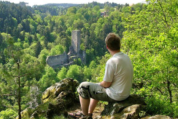 Blick auf die Burgruine Wieladingen