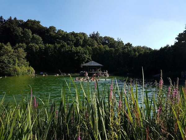 Waldbad in Nandlstadt
