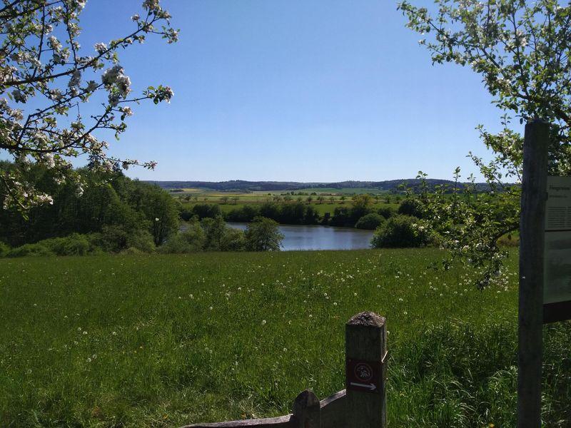 Naturschutzgebiet Hengstwiesen - N8