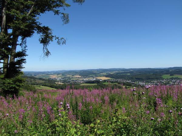 Blick auf Neuenrade