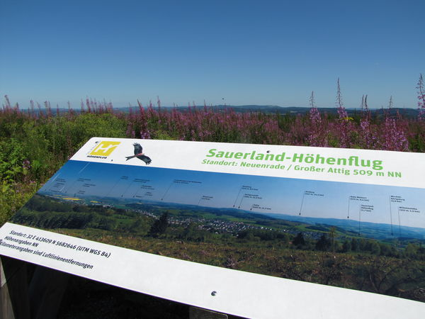 Julimorgen am Sauerland-Höhenflug in Neuenrade