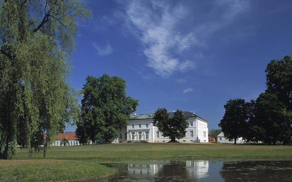 Schlosspark Neuhardenberg, Foto: Stiftung Schloss Neuhardenberg / Toma Babovic