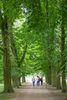 Spaziergang im Schlosspark Neuhardenberg, Foto: Florian Läufer
