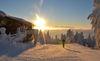 Skifahren bei Sonnenaufgang am Hohenbogen