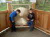 Kinderspaß mit dem Gong auf dem Klangweg in Neukirchen b. Hl. Blut