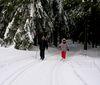 Skiwanderer bei Neurittsteig im Bayerischen Wald